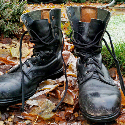 FirstLight Boots in frosty leaves